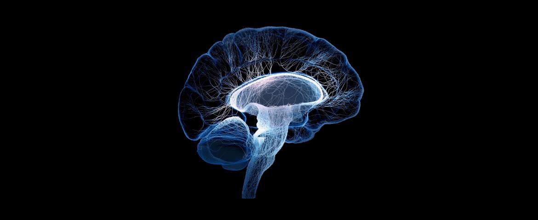 Internamento Psiquiátrico nas Doenças Mentais